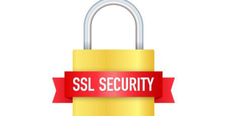 SSL Sertifikası Çeşitleri Nelerdir?